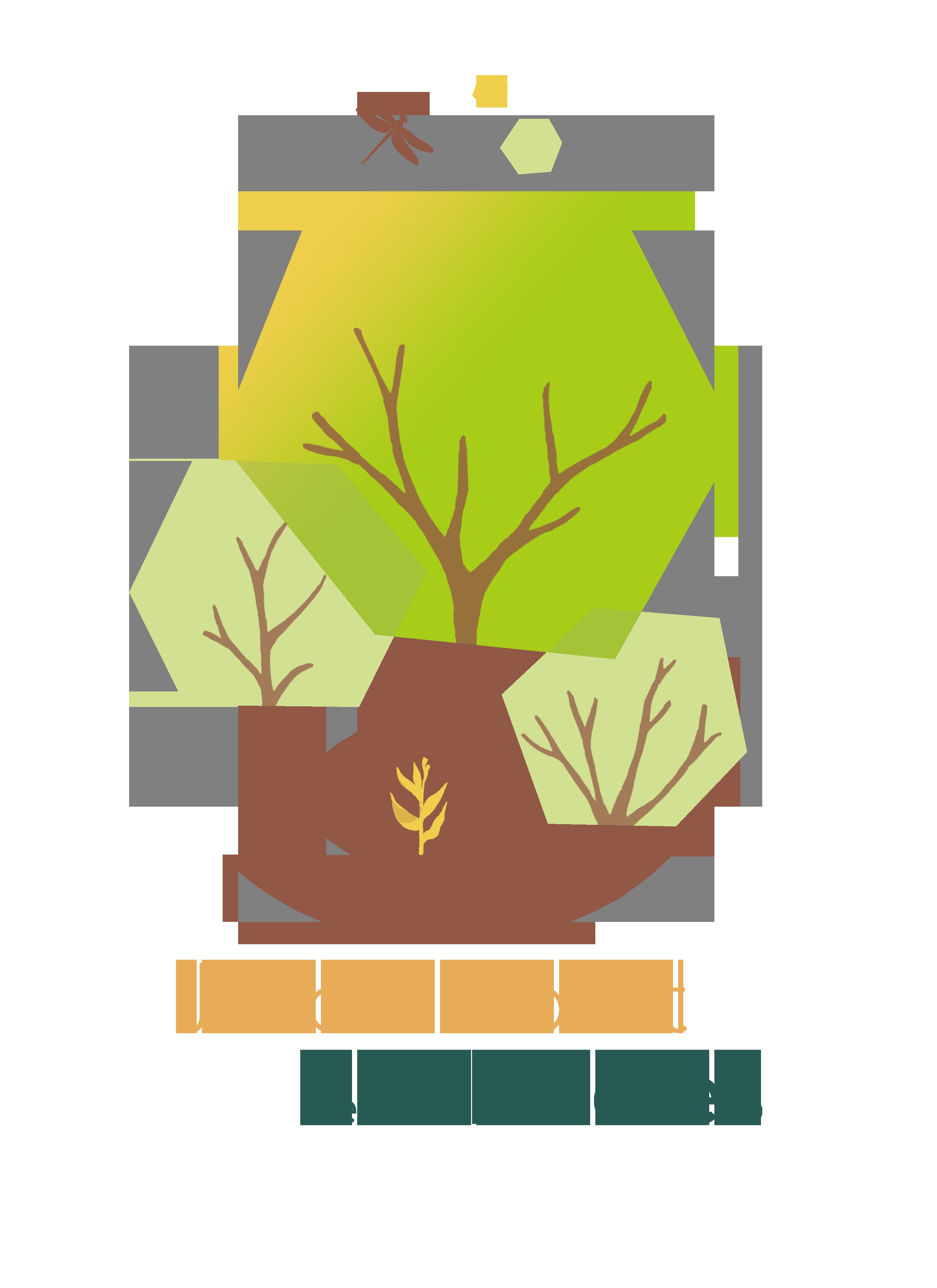 Jardin-Forêt